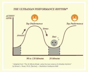 Ultradiaani rytmi, jonka mukaan sekä unessa että valveilla vireystilamme vaihtelee korkeasta matalaan noin 90 minuutin sykleissä